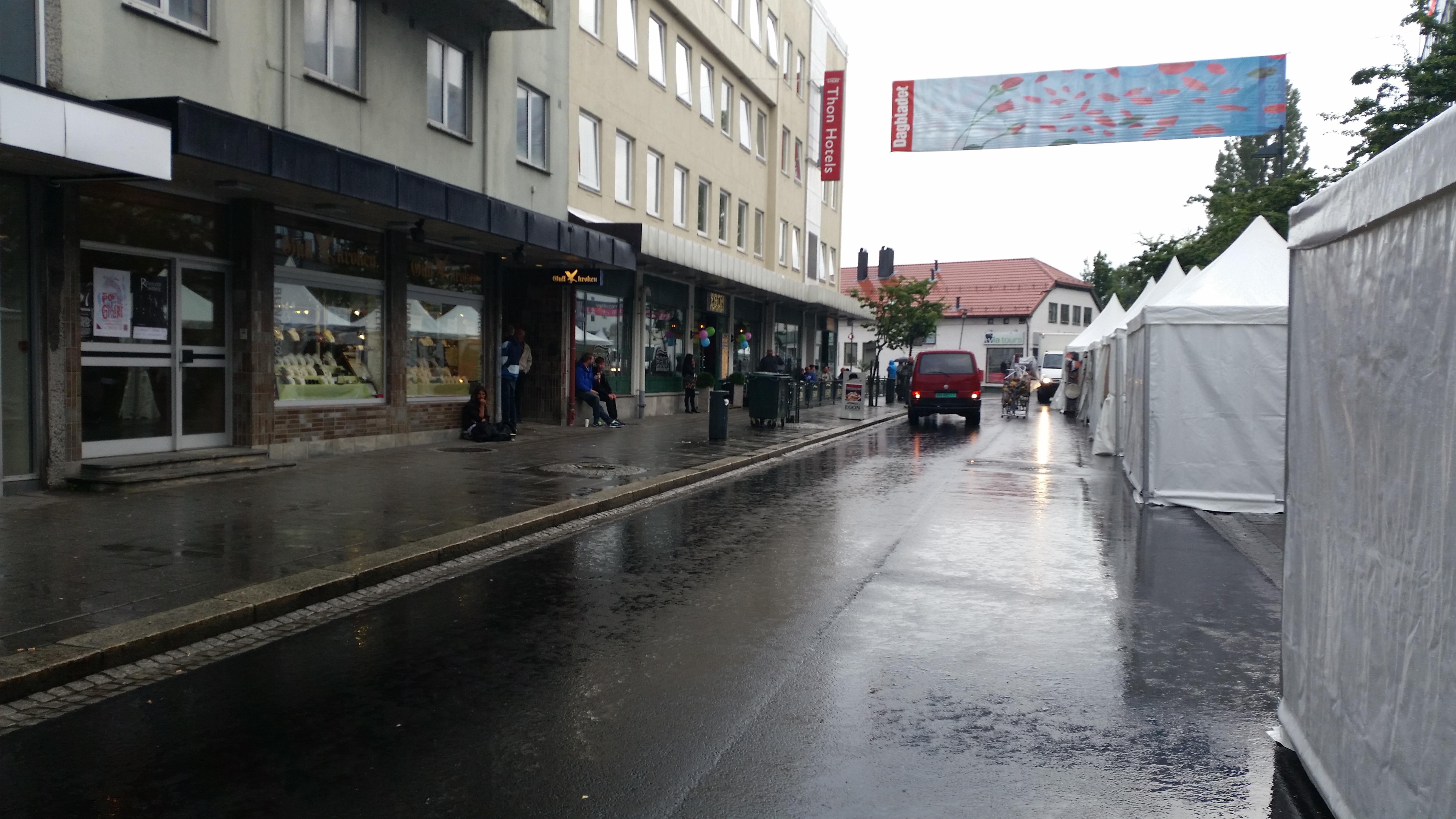 Regn. Foto: Ole Foss